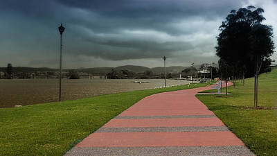 Photograph - Taree Take A Walk 01 by Kevin Chippindall