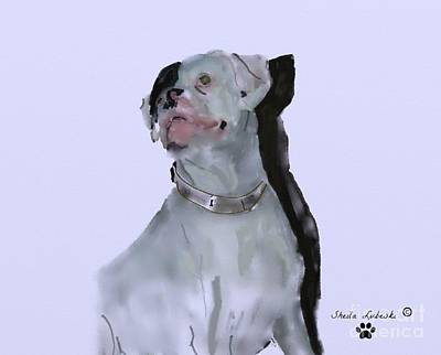 Boxer Dog Digital Art - Target by Sheila Lubeski