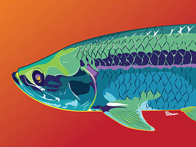 Fish Digital Art - Tarpon Colors by Kevin Putman