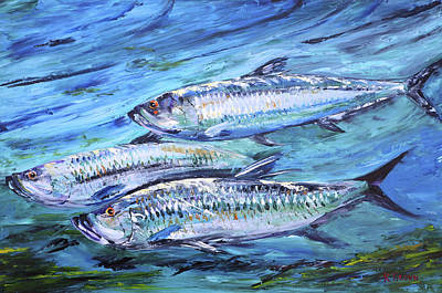 Tarpon On The Move Art Print by Kevin  Brown