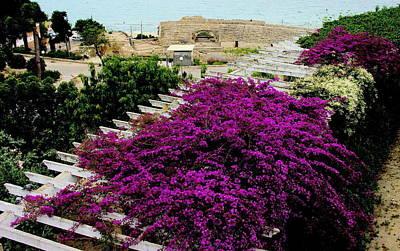 Photograph - Tarragona Roman Amphitheater by Jacqueline M Lewis