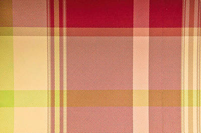 Tartan Cloth Art Print by Tom Gowanlock