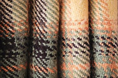 Tartan Fabric Art Print by Tom Gowanlock