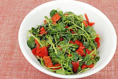 Vintage College Subway Signs Color - Tasty Watercress Salad by Lee Serenethos