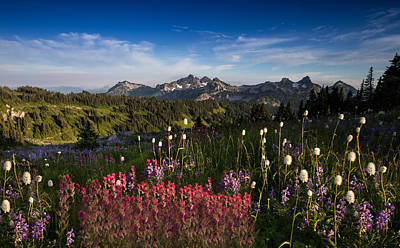 Tatoosh Mountain Range Art Print by Larry Marshall