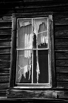Tattered And Torn Print by Cat Connor