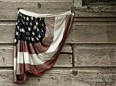 Print featuring the photograph Tattered Glory by Vicki DeVico