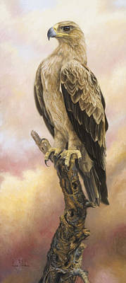 Pray Painting - Tawny Eagle by Lucie Bilodeau