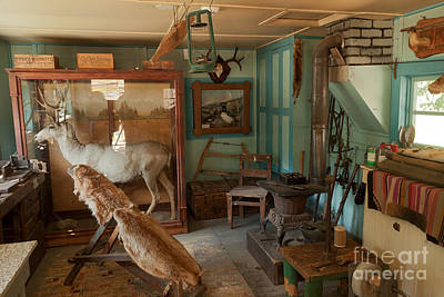 Photograph - Taxidermy At The Holzwarth Historic Site by Fred Stearns