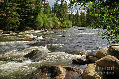 Photograph - Taylor River by Kelly Black