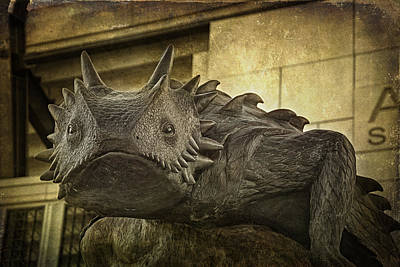 Nighttime Street Photography - TCU Horned Frog by Joan Carroll