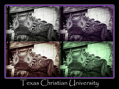 Frogs Photograph - Tcu Horned Frog Poster by Joan Carroll