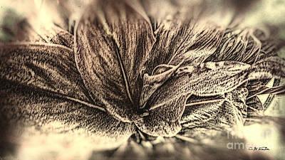 Digital Art - Tea leaves 2 by Charles Davis