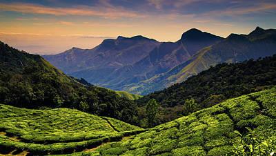 Photograph - Tea Plantations Near Kodaikanal by Photograph By Jonah Murphy