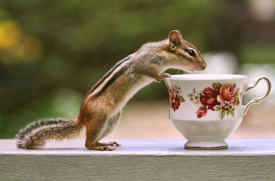 Tea Time With Chipmunk Art Print