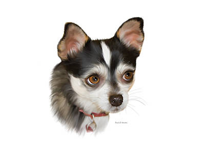 Teacup Chihuahua Painting - Teacup Chihuahua by Angela A Stanton