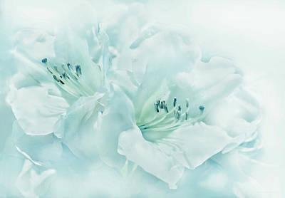 Photograph - Teal Green Azalea Flowers by Jennie Marie Schell