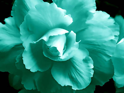 Photograph - Teal Green Begonia Floral by Jennie Marie Schell