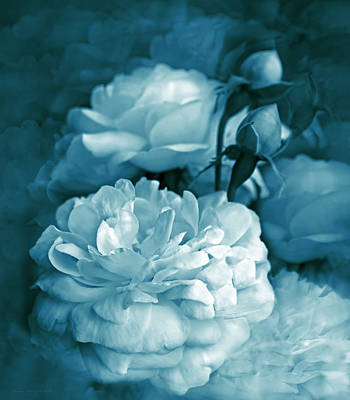 Photograph - Teal Blue Roses Bouquet by Jennie Marie Schell