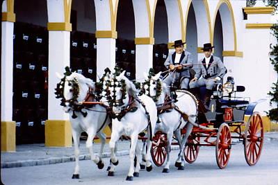 Team Of Four Andalusians Original