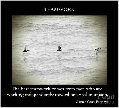 Photograph - Teamwork by Kerri Farley