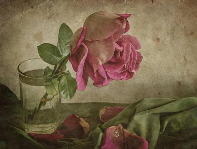 Petals Photograph - Tear Of Rose by Igor Tokarev