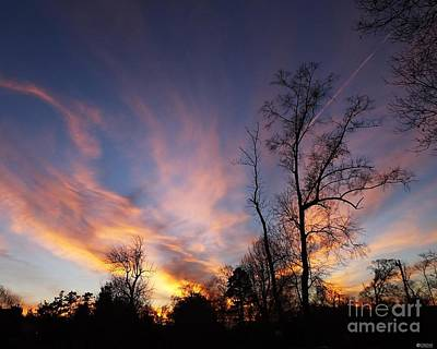 Photograph - Technicolor Sunset by Lizi Beard-Ward