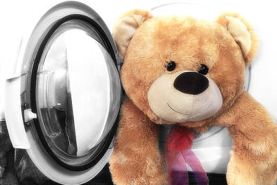 Photograph - Teddy Bear 07 by Kevin Chippindall