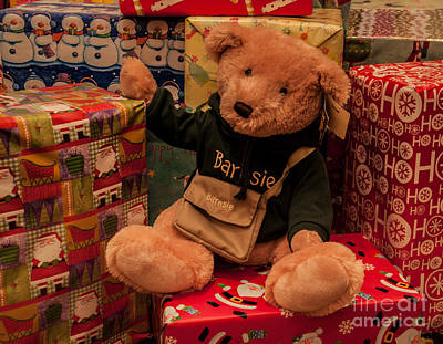 Photograph - Teddy Bear And Christmas by Ronald Grogan