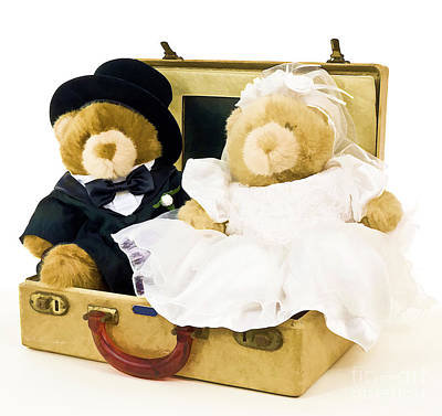 Adorable Photograph - Teddy Bear Honeymoon by Edward Fielding