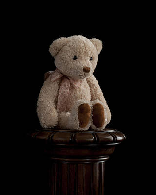 Photograph - Teddy Bear by Marinus Ortelee