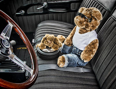 Photograph - Teddy In A Chevy by Ron Roberts