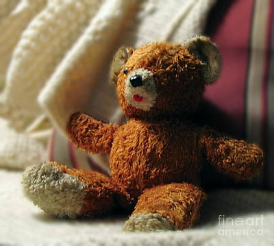Photograph - Teddy by Marilyn Smith