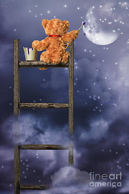 Teddy Painting At Night Print by Amanda Elwell