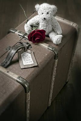 Floral Photograph - Teddy Wants To Travel by Joana Kruse