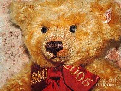 Photograph - Teddy's Anniversary by Jutta Maria Pusl