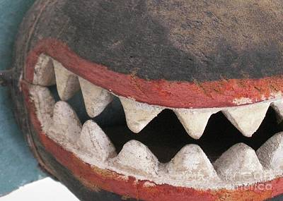 Photograph - Native Teeth by Valerie Reeves