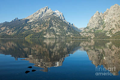 Photograph - Teewinot Mountain Cascade Canyon Jenny Lake Grand Teton National by Fred Stearns