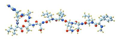 Synthesis Photograph - Teixobactin Antibiotic Molecule by Dr Mark J. Winter