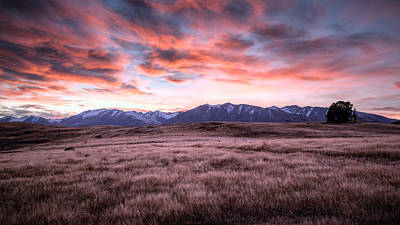 Photograph - Tekapo Dawn by Brad Grove