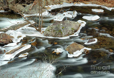 Tellico River Art Print by Douglas Stucky