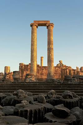 Temple Of Apollo Art Print by David Parker