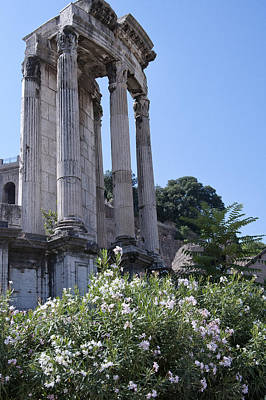 Photograph - Temple Of Vesta by Melany Sarafis