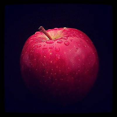 Apple Wall Art - Photograph - Temptation by Emanuela Carratoni