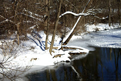 Photograph - Ten Mile River Ne View by Barbara Giordano
