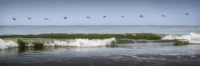 Art Print featuring the photograph Ten Pelicans by Steven Sparks