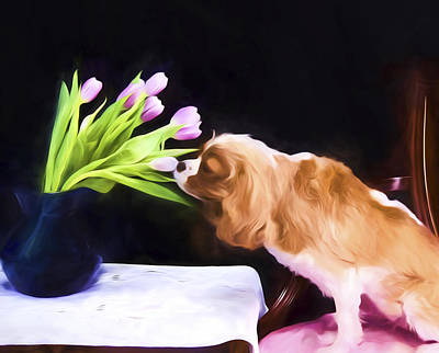 Tender Moment Bwteen Cavalier King Charles And Tulips Art Print