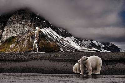 Polar Bear Photograph - Tenderness by Mathilde Collot