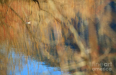 Photograph - Floating In The Abstract 2 by Michelle Twohig