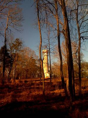 Photograph - Tennessee Battle Fort by Robin Lewis
